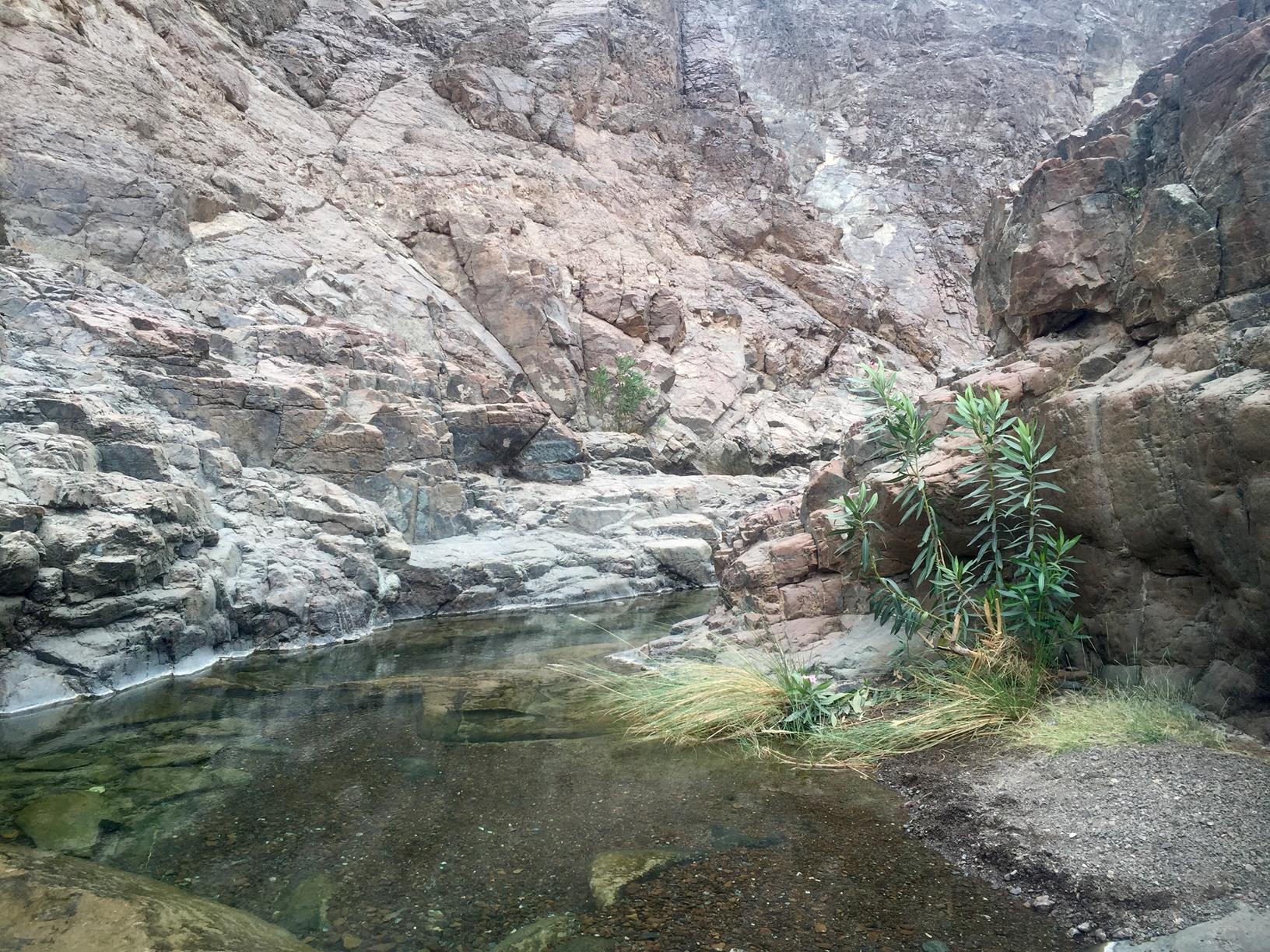 Shawka Pools